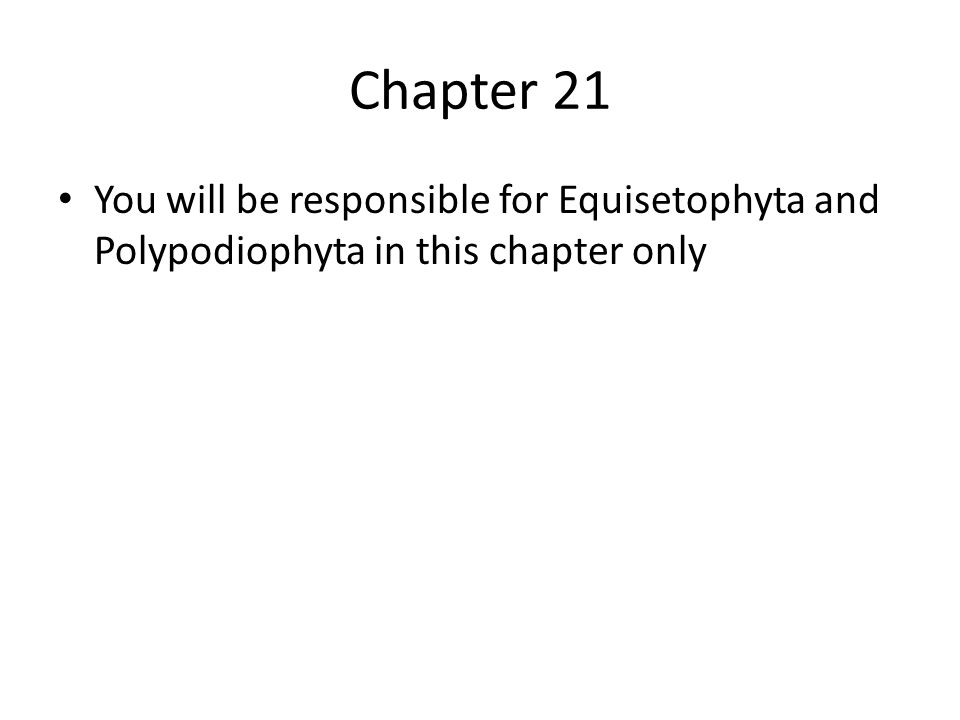 Chapter 21 You will be responsible for Equisetophyta and Polypodiophyta in this chapter only
