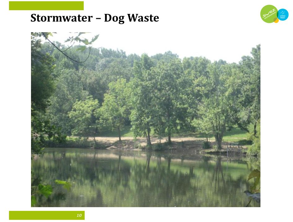 10 Stormwater – Dog Waste