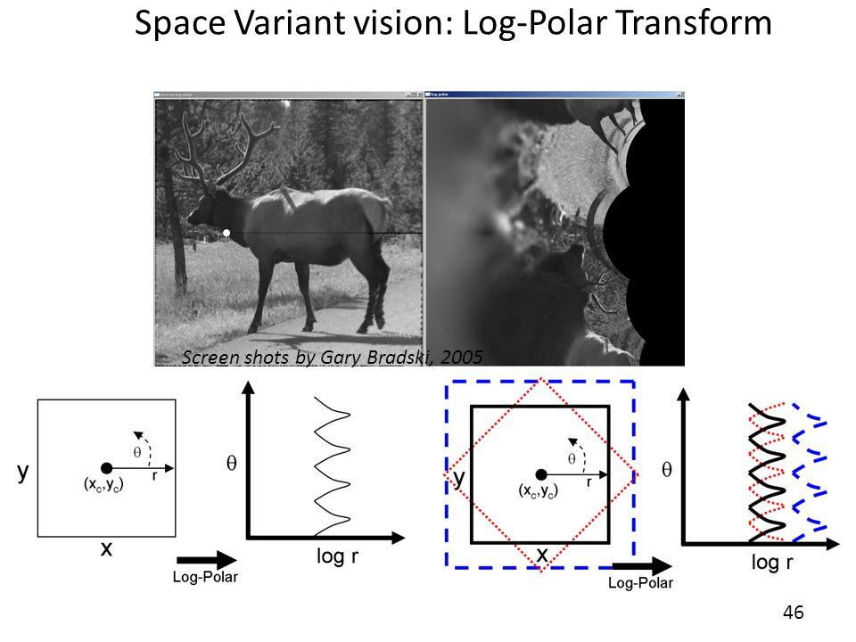 Space Variant vision: Log-Polar Transform 46 Screen shots by Gary Bradski, 2005