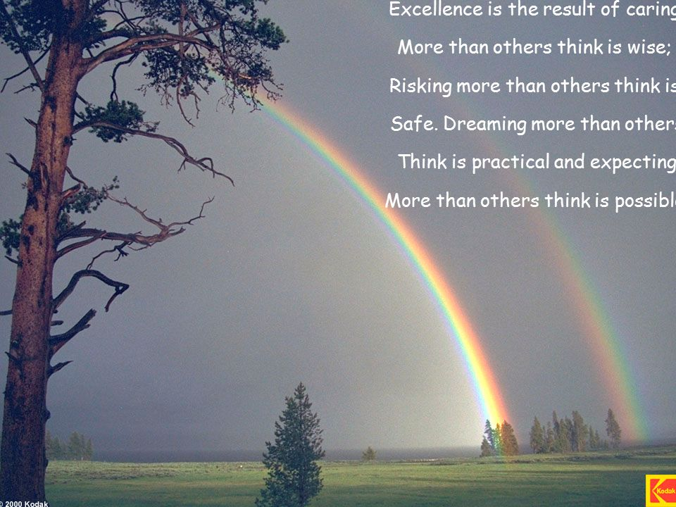 Excellence is the result of caring More than others think is wise; Risking more than others think is Safe.