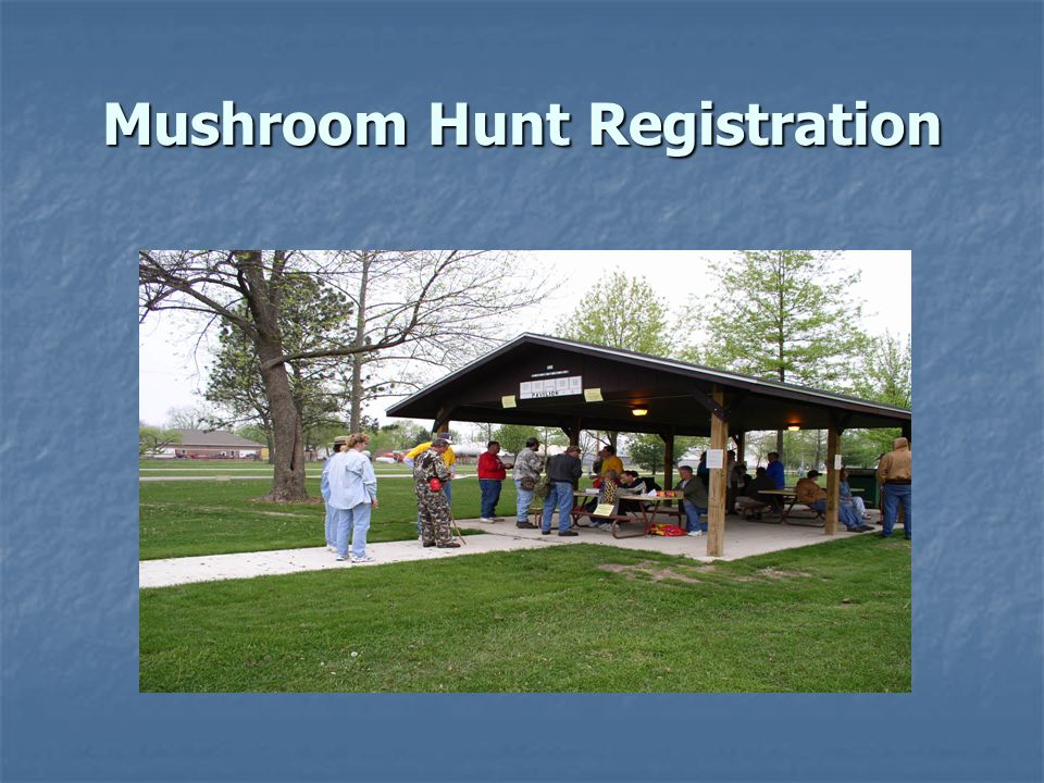 Mushroom Hunt Registration