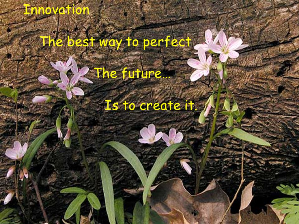 Innovation The best way to perfect The future… Is to create it.