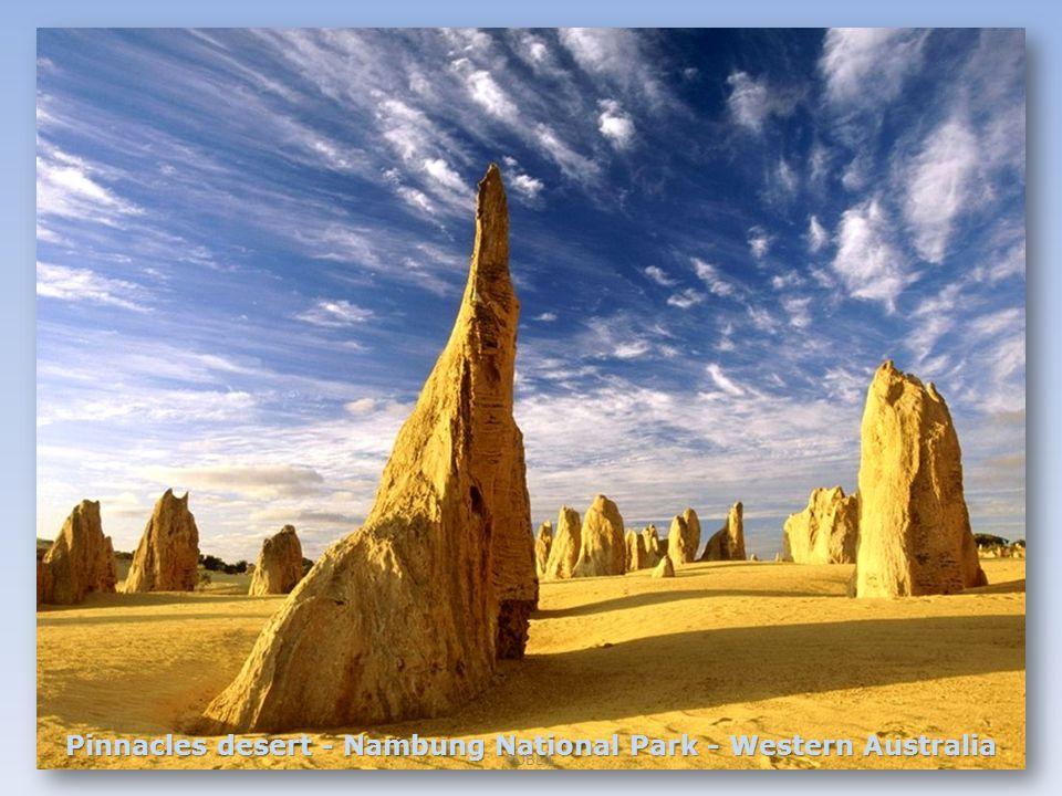 Pinnacles desert - Nambung National Park - Western Australia PUBLIC