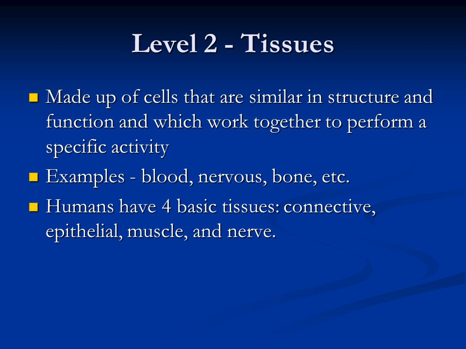 Level 2 - Tissues Made up of cells that are similar in structure and function and which work together to perform a specific activity Made up of cells