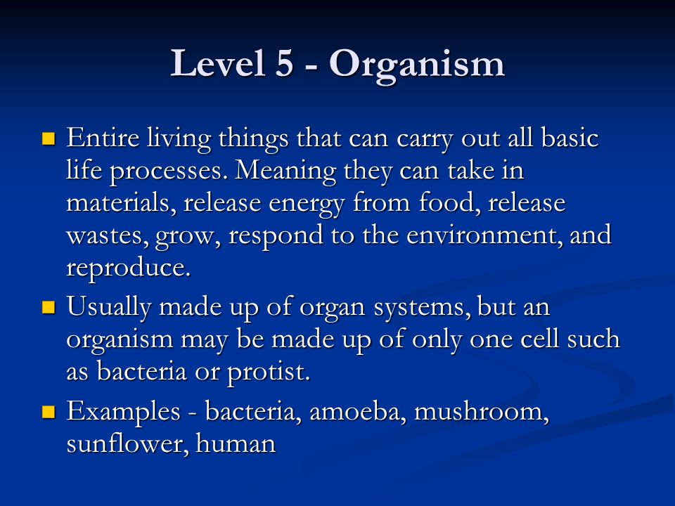 Level 5 - Organism Entire living things that can carry out all basic life processes. Meaning they can take in materials, release energy from food, rel