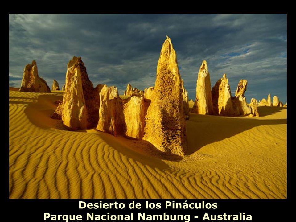 Desierto de los Pináculos Parque Nacional Nambung - Australia