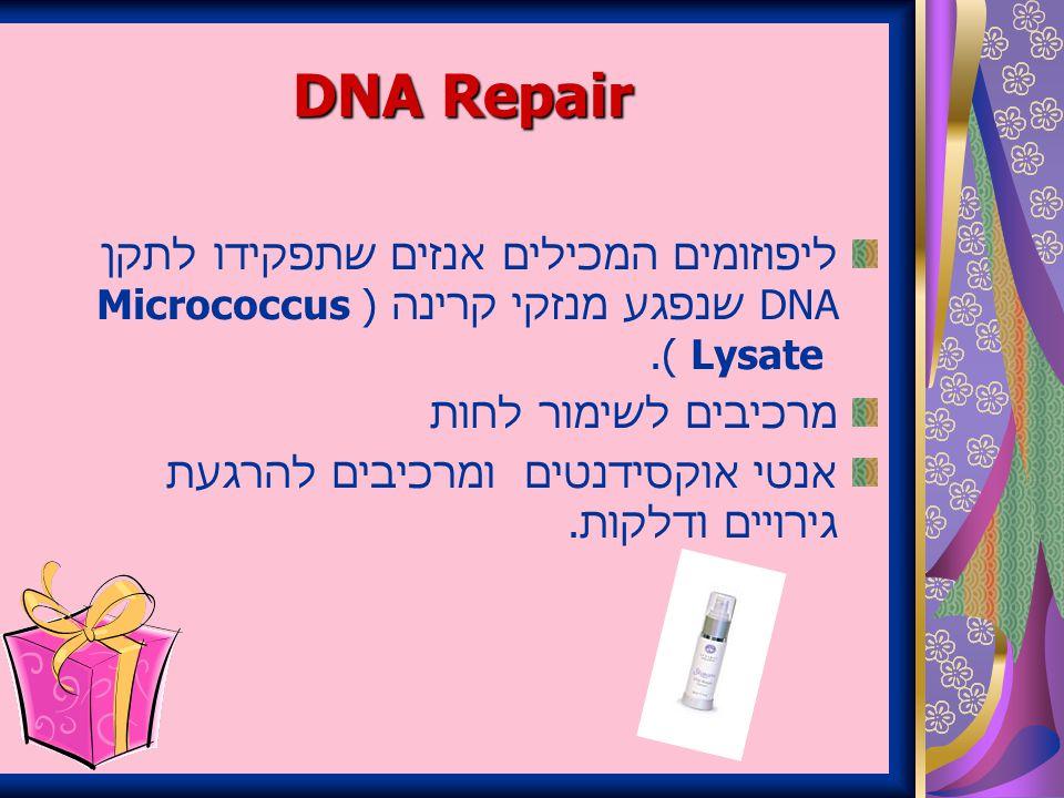 DNA Repair ליפוזומים המכילים אנזים שתפקידו לתקן DNA שנפגע מנזקי קרינה (Micrococcus Lysate ).