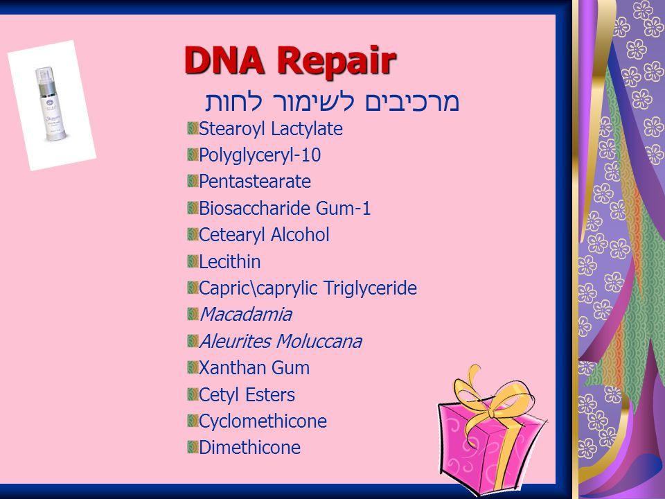 DNA Repair מרכיבים לשימור לחות Stearoyl Lactylate Polyglyceryl-10 Pentastearate Biosaccharide Gum-1 Cetearyl Alcohol Lecithin Capric\caprylic Triglyceride Macadamia Aleurites Moluccana Xanthan Gum Cetyl Esters Cyclomethicone Dimethicone