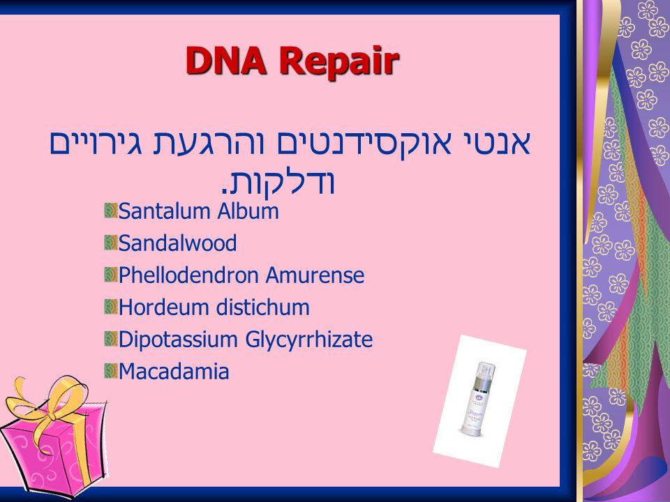 DNA Repair אנטי אוקסידנטים והרגעת גירויים ודלקות.