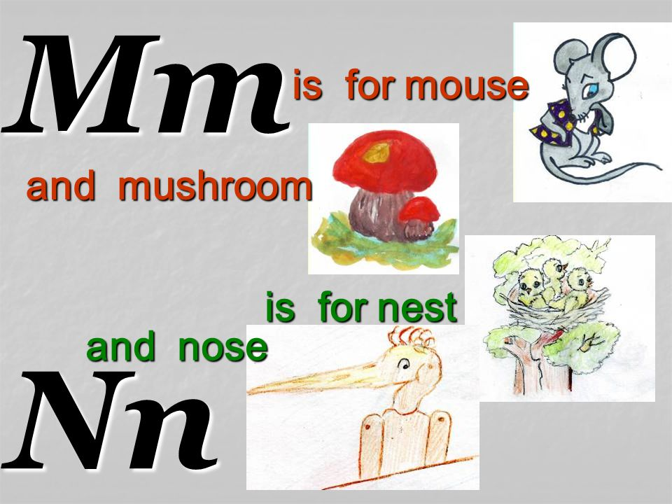 MmNn is for nest and nose is for mouse and mushroom