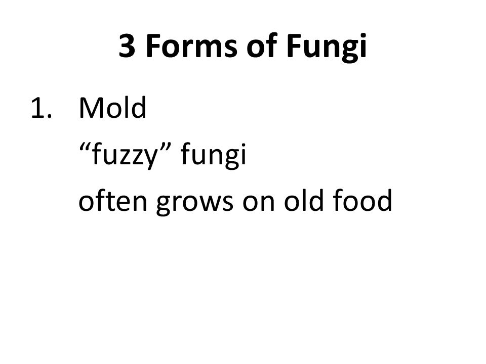 3 Forms of Fungi 1.Mold fuzzy fungi often grows on old food