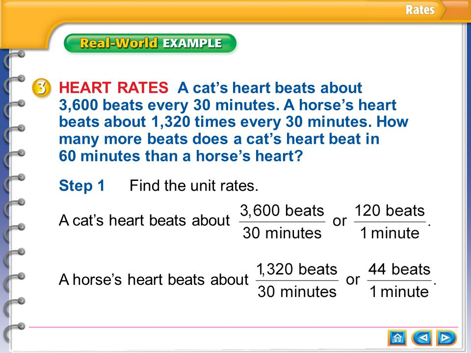 Example 3 HEART RATES A cat's heart beats about 3,600 beats every 30 minutes.
