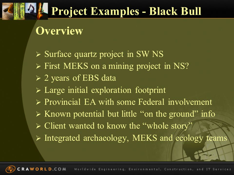 Project Examples – Black Bull Beneficial Role in EA Process  Helped diminish anxiety using facts – locations of resources for example  Showed seriousness of client to know the whole picture  Credibility with investors of conscious  Leveled playing field with certain NGO groups  Community trust increased due to transparency