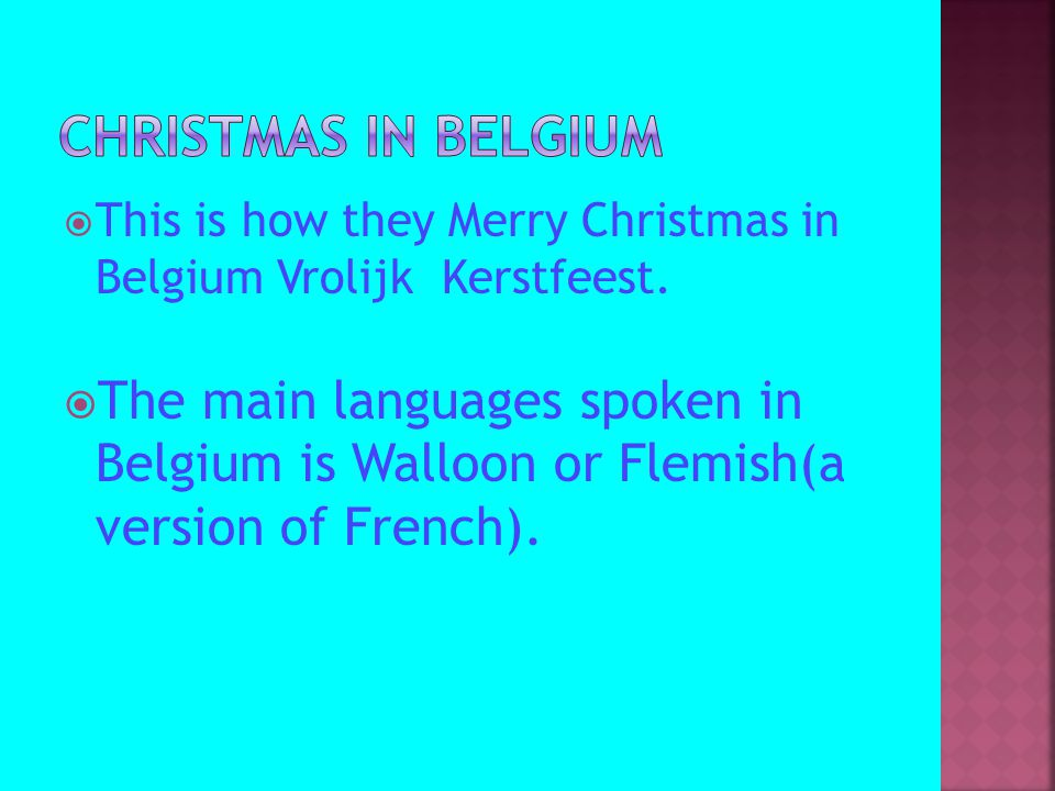  This is how they Merry Christmas in Belgium Vrolijk Kerstfeest.  The main languages spoken in Belgium is Walloon or Flemish(a version of French).