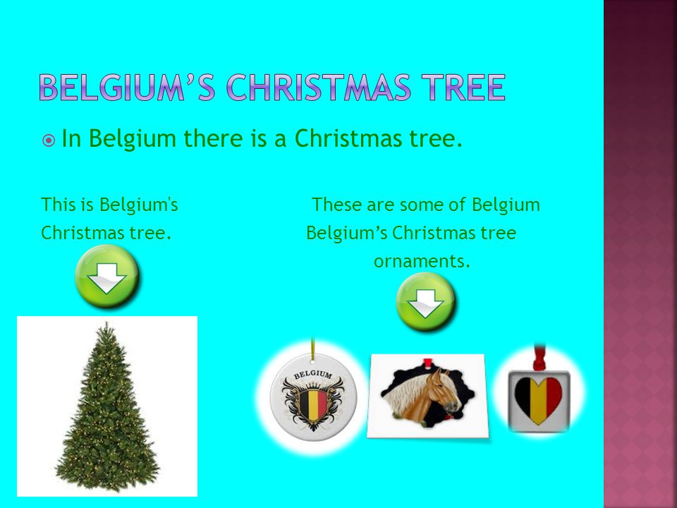  In Belgium there is a Christmas tree. This is Belgium's These are some of Belgium Christmas tree. Belgium's Christmas tree ornaments.