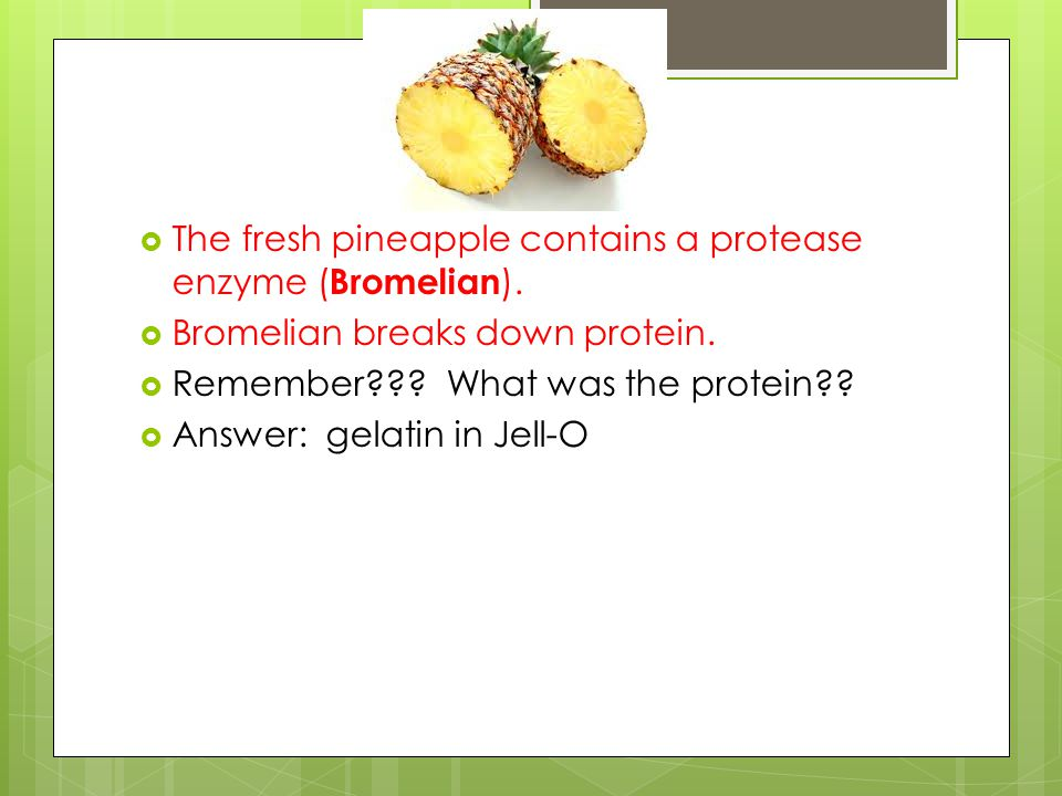  The protease enzyme, Bromelian, joins to the substrate, Protein, at the enzymes' active site.