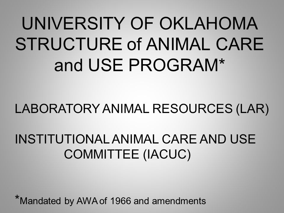 UNIVERSITY OF OKLAHOMA STRUCTURE of ANIMAL CARE and USE PROGRAM* LABORATORY ANIMAL RESOURCES (LAR) INSTITUTIONAL ANIMAL CARE AND USE COMMITTEE (IACUC) * Mandated by AWA of 1966 and amendments
