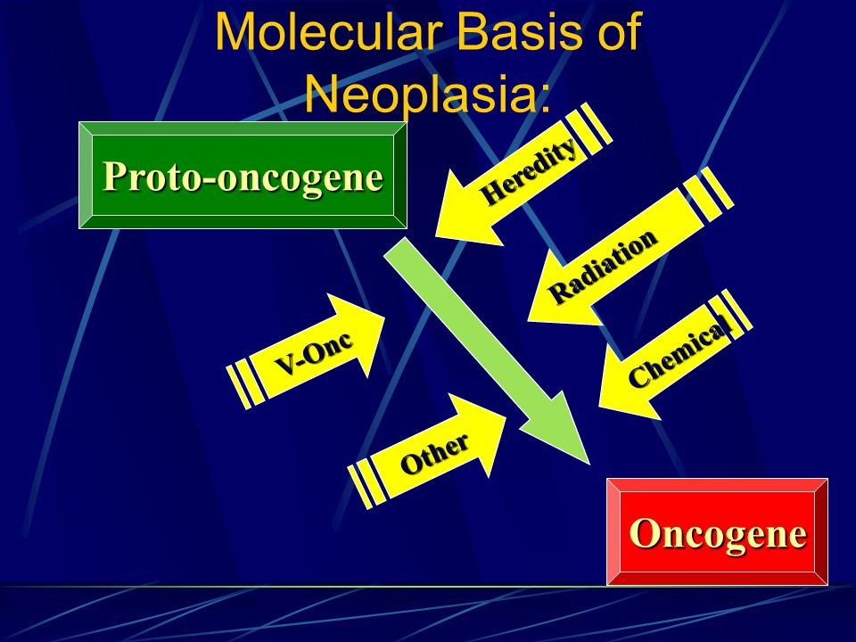 Molecular Basis of Neoplasia: Proto-oncogene Oncogene V-Onc Other Heredity Radiation Chemical