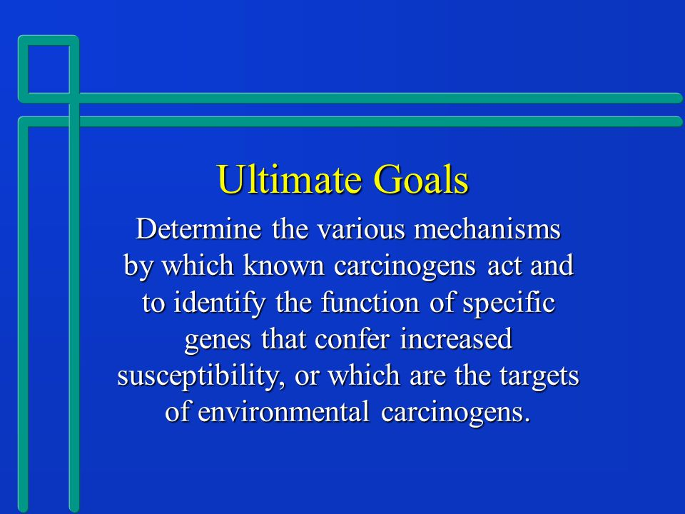 Ultimate Goals Determine the various mechanisms by which known carcinogens act and to identify the function of specific genes that confer increased susceptibility, or which are the targets of environmental carcinogens.
