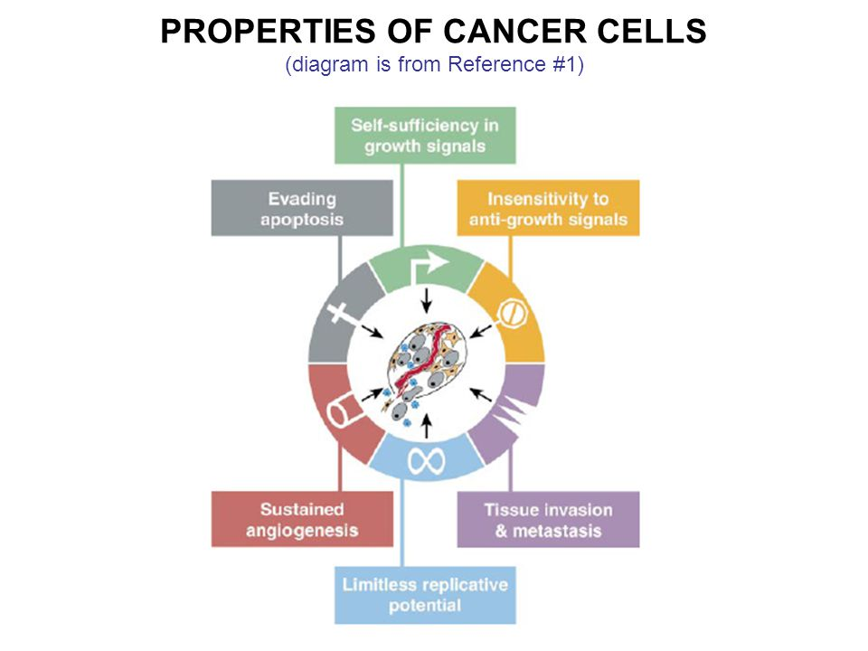 PROPERTIES OF CANCER CELLS (diagram is from Reference #1)