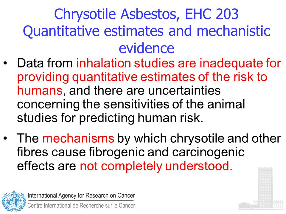 Chrysotile Asbestos, EHC 203 Quantitative estimates and mechanistic evidence Data from inhalation studies are inadequate for providing quantitative estimates of the risk to humans, and there are uncertainties concerning the sensitivities of the animal studies for predicting human risk.