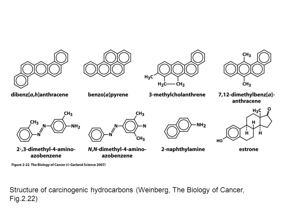 Structure of carcinogenic hydrocarbons (Weinberg, The Biology of Cancer, Fig.2.22)