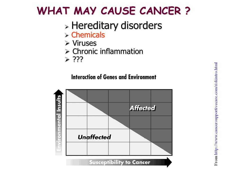 Classification of Carcinogens According to the Mode of Action GENOTOXIC:  DNA-reactive or DNA-reactive metabolites  Direct interaction to alter chromosomal number/integrity  May be mutagenic or cytotoxic  Usually cause mutations in simple systems DNA Adduct Mutation Cancer