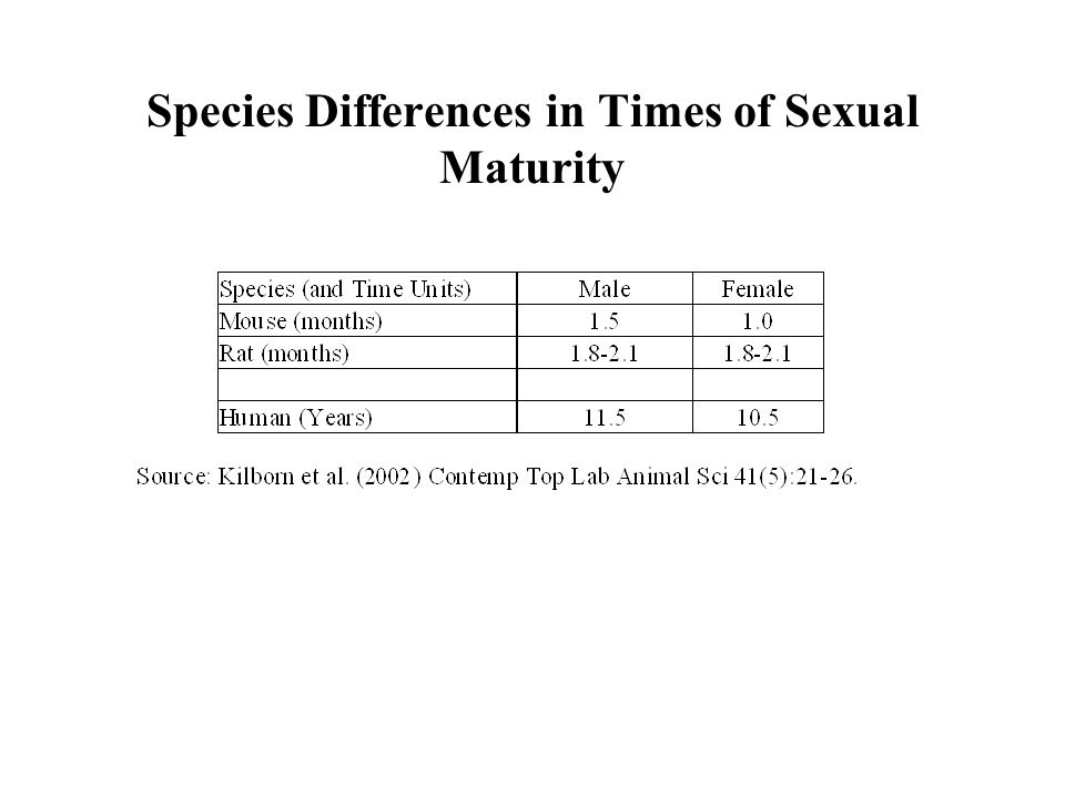 Species Differences in Times of Sexual Maturity