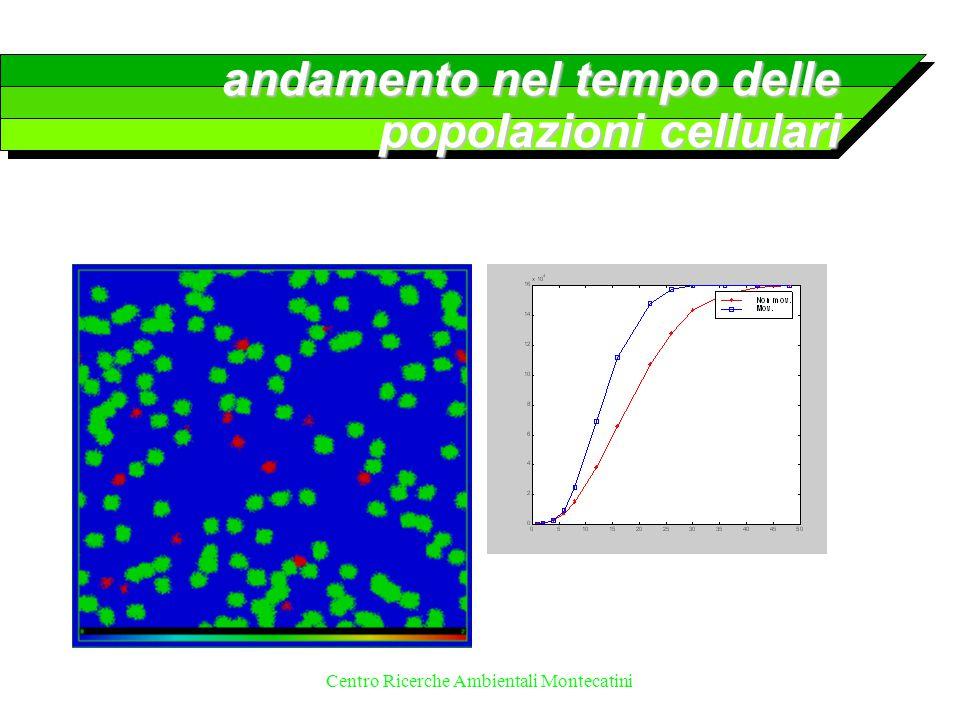 Centro Ricerche Ambientali Montecatini andamento nel tempo delle popolazioni cellulari