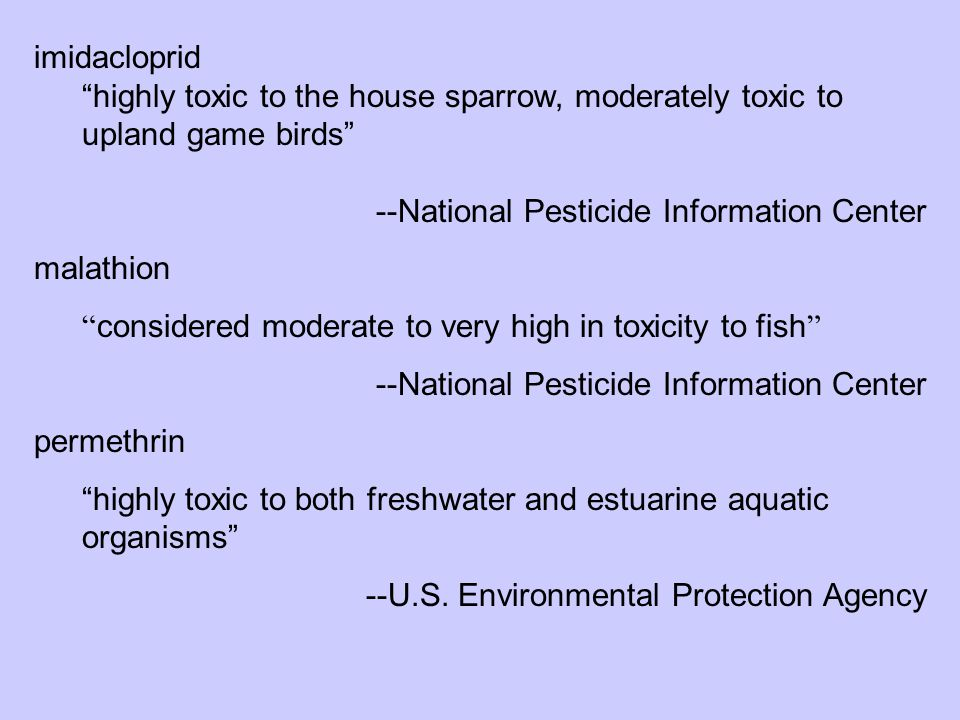 "imidacloprid ""highly toxic to the house sparrow, moderately toxic to upland game birds"" --National Pesticide Information Center malathion "" considered"