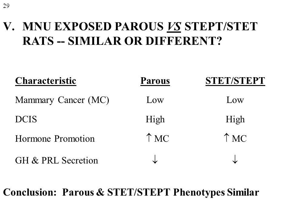 V.MNU EXPOSED PAROUS VS STEPT/STET RATS -- SIMILAR OR DIFFERENT.