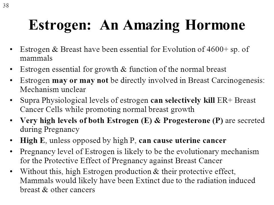 Estrogen: An Amazing Hormone Estrogen & Breast have been essential for Evolution of 4600+ sp.