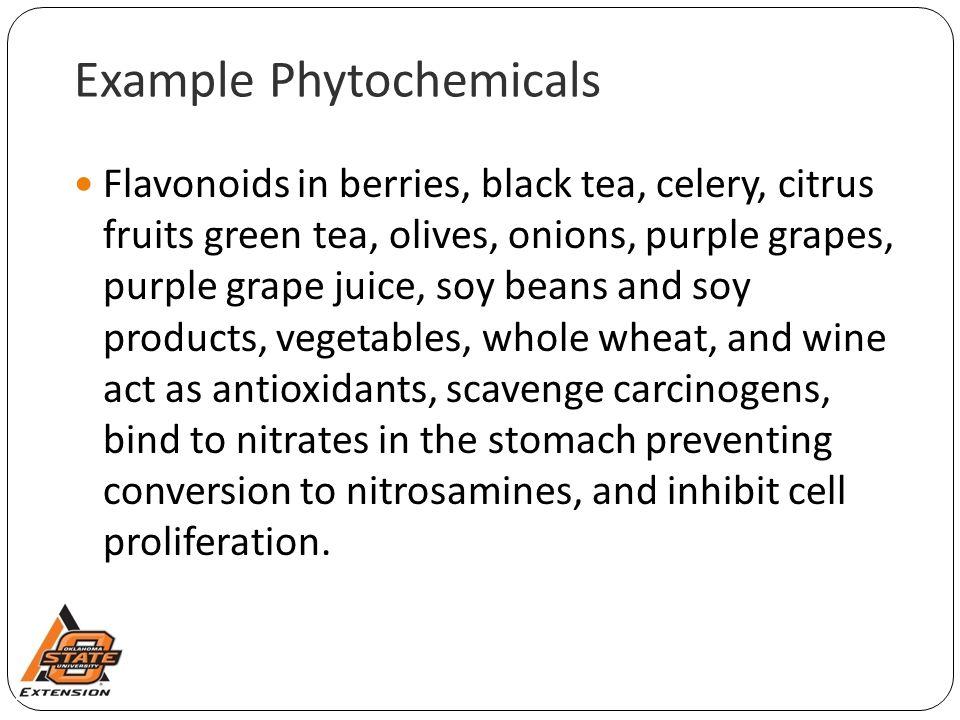 Example Phytochemicals Flavonoids in berries, black tea, celery, citrus fruits green tea, olives, onions, purple grapes, purple grape juice, soy beans