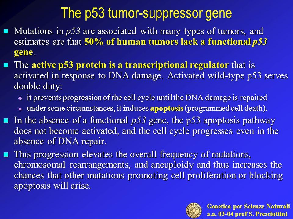 Genetica per Scienze Naturali a.a. 03-04 prof S.