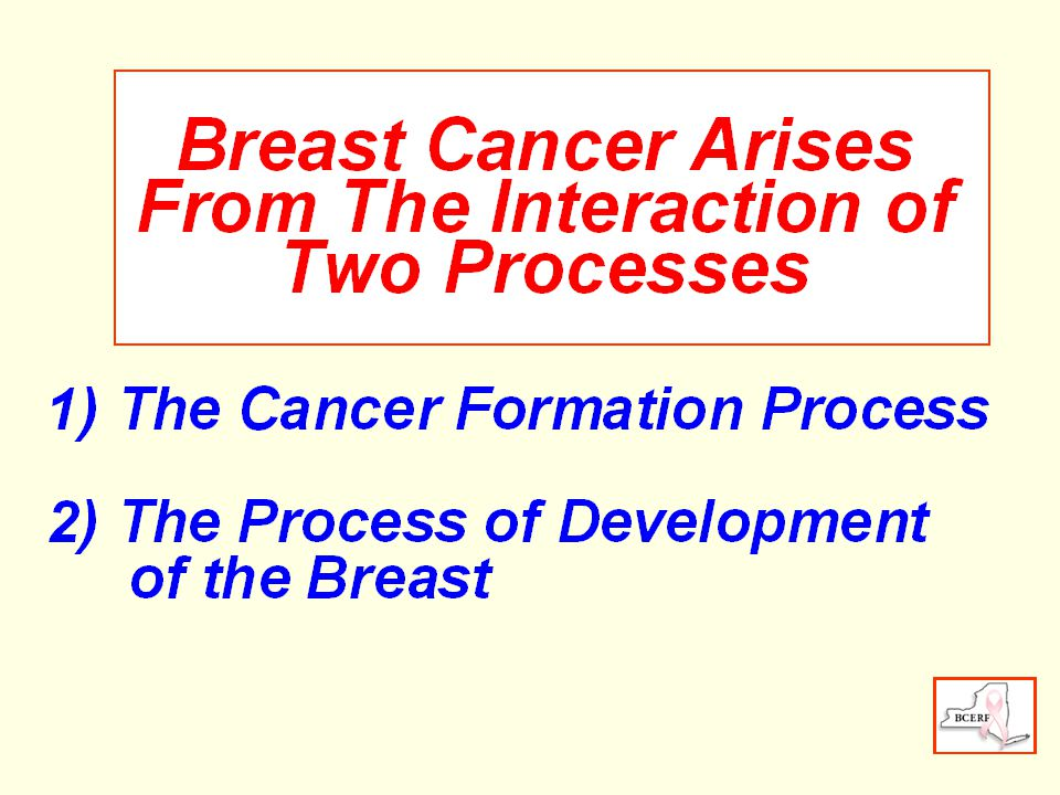 Initiation PromotionProgression Mutation Cancer Gene Proliferation Independence Mutation Invade & Spread Stages of Cancer Formation Unspecialized Cell Initiated Cell Benign Tumor Malignant Tumor Latency Period, 20 years or more