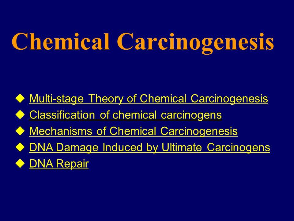 36 Viral Oncogenesis RNA Oncovirus (Retrovirus) DNA Oncovirus
