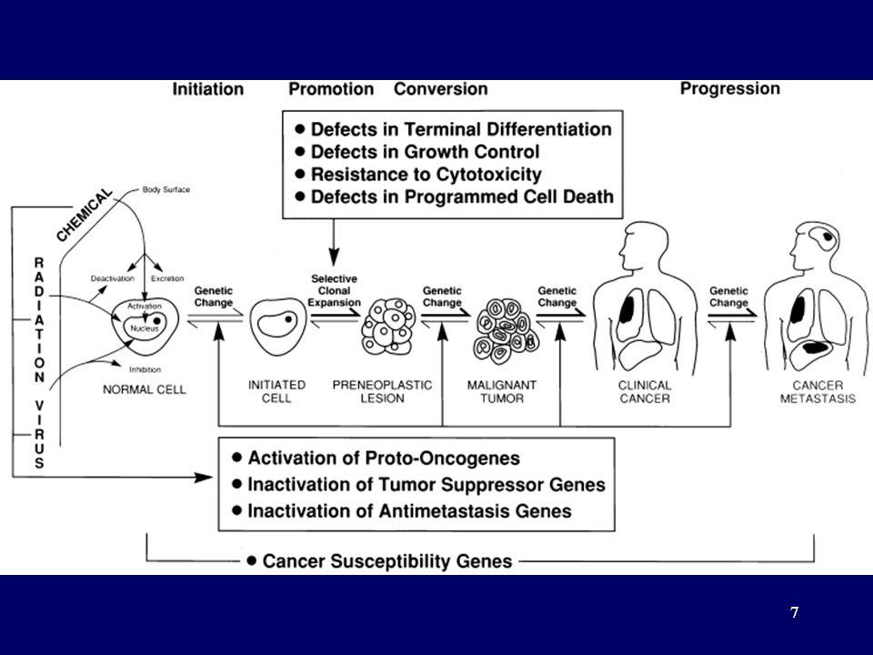 38 Classification of retrovirus