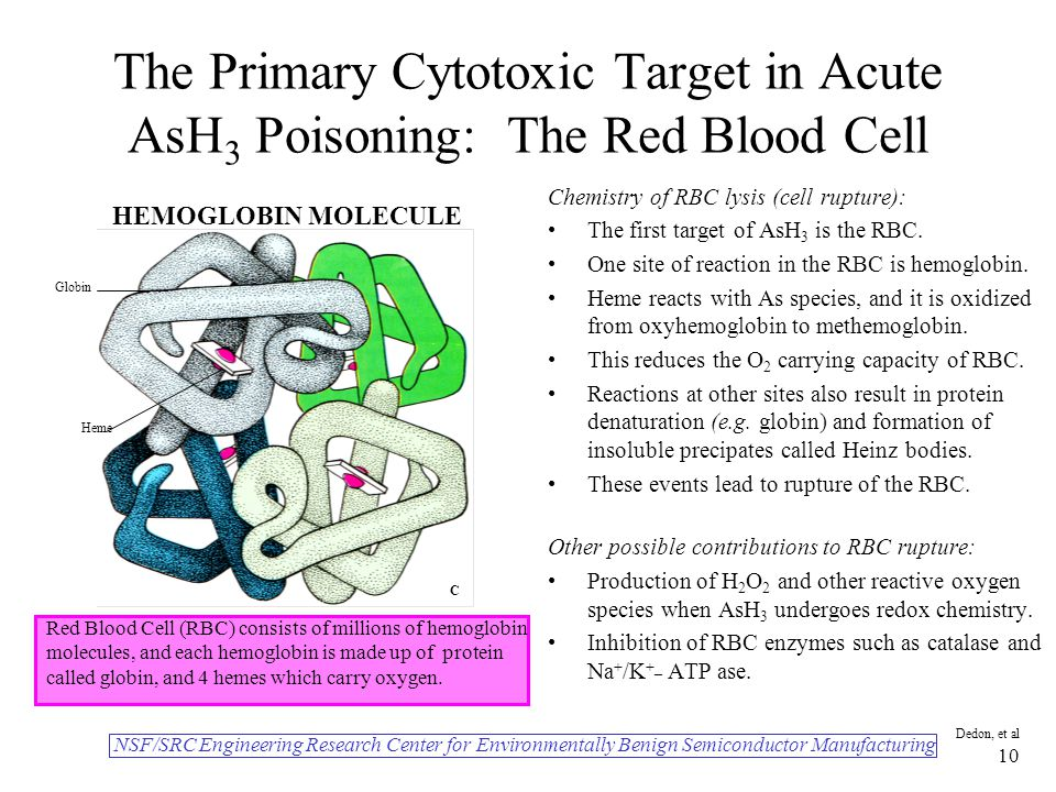NSF/SRC Engineering Research Center for Environmentally Benign Semiconductor Manufacturing Dedon, et al 10 The Primary Cytotoxic Target in Acute AsH 3 Poisoning: The Red Blood Cell Chemistry of RBC lysis (cell rupture): The first target of AsH 3 is the RBC.