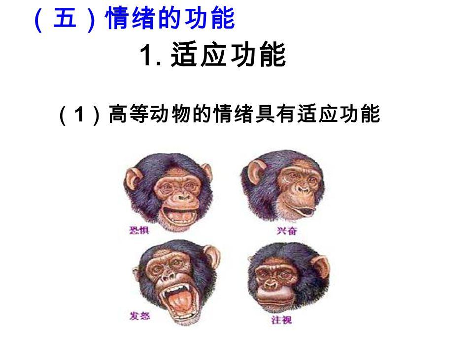 ( 1 )高等动物的情绪具有适应功能 1. 适应功能 (五)情绪的功能
