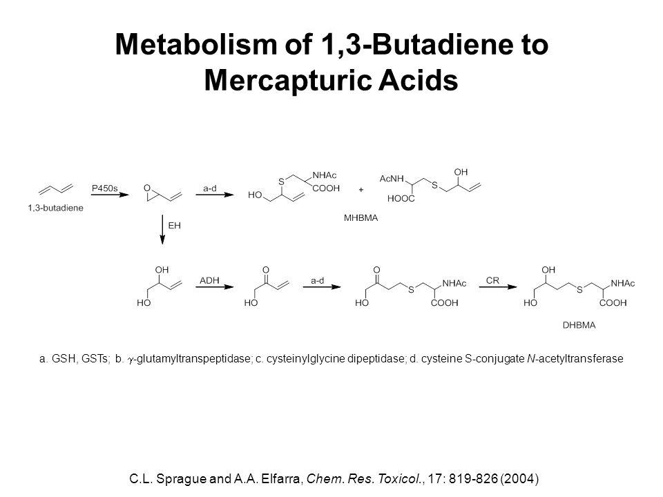 Metabolism of 1,3-Butadiene to Mercapturic Acids C.L. Sprague and A.A. Elfarra, Chem. Res. Toxicol., 17: 819-826 (2004) a. GSH, GSTs; b.  -glutamyltr