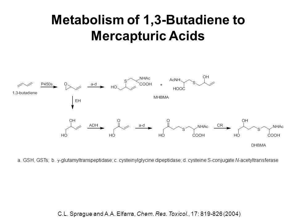 Metabolism of 1,3-Butadiene to Mercapturic Acids C.L.