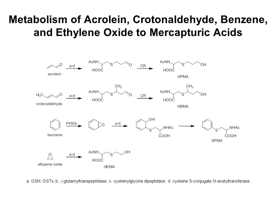 Metabolism of Acrolein, Crotonaldehyde, Benzene, and Ethylene Oxide to Mercapturic Acids a. GSH, GSTs; b.  -glutamyltranspeptidase; c. cysteinylglyci