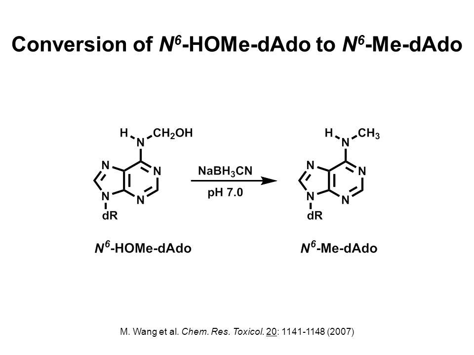 Conversion of N 6 -HOMe-dAdo to N 6 -Me-dAdo M. Wang et al.
