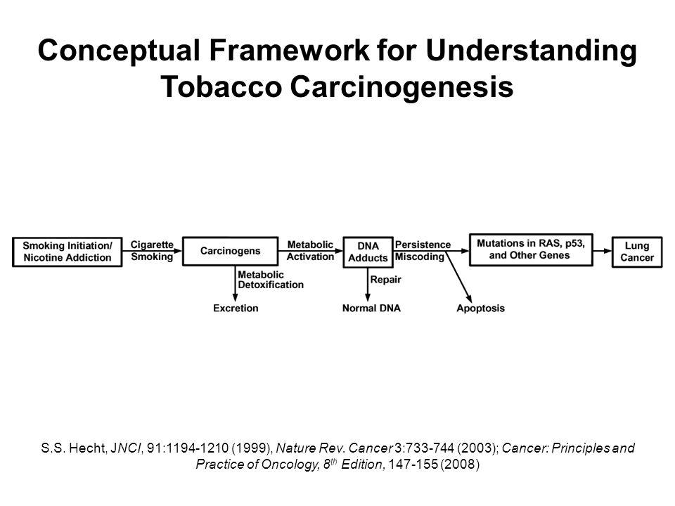 Conceptual Framework for Understanding Tobacco Carcinogenesis S.S.