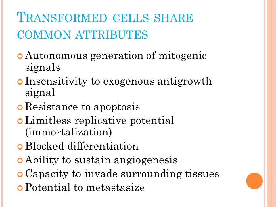 T RANSFORMED CELLS SHARE COMMON ATTRIBUTES Autonomous generation of mitogenic signals Insensitivity to exogenous antigrowth signal Resistance to apoptosis Limitless replicative potential (immortalization) Blocked differentiation Ability to sustain angiogenesis Capacity to invade surrounding tissues Potential to metastasize