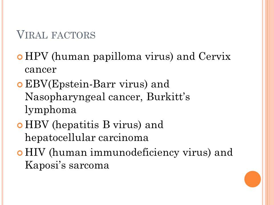 V IRAL FACTORS HPV (human papilloma virus) and Cervix cancer EBV(Epstein-Barr virus) and Nasopharyngeal cancer, Burkitt's lymphoma HBV (hepatitis B vi