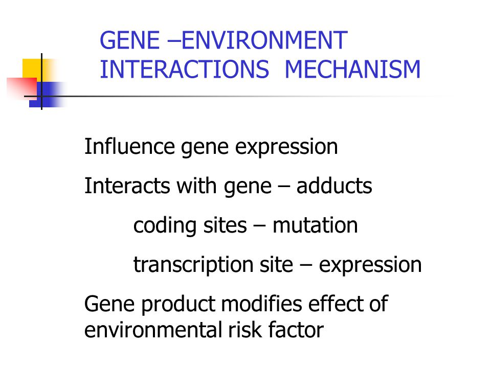 Influence gene expression Interacts with gene – adducts coding sites – mutation transcription site – expression Gene product modifies effect of environmental risk factor GENE –ENVIRONMENT INTERACTIONS MECHANISM