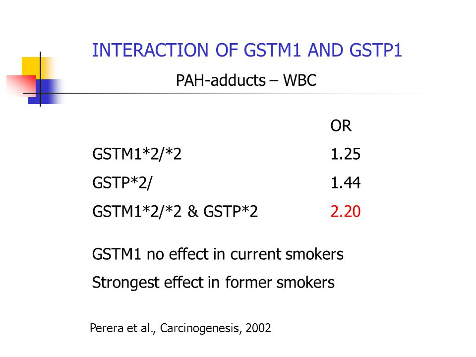 INTERACTION OF GSTM1 AND GSTP1 PAH-adducts – WBC OR GSTM1*2/*21.25 GSTP*2/1.44 GSTM1*2/*2 & GSTP*22.20 GSTM1 no effect in current smokers Strongest effect in former smokers Perera et al., Carcinogenesis, 2002