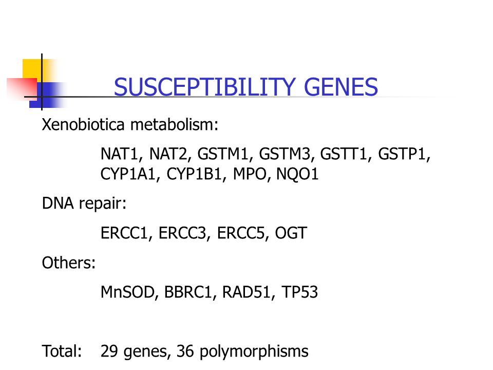 SUSCEPTIBILITY GENES Xenobiotica metabolism: NAT1, NAT2, GSTM1, GSTM3, GSTT1, GSTP1, CYP1A1, CYP1B1, MPO, NQO1 DNA repair: ERCC1, ERCC3, ERCC5, OGT Others: MnSOD, BBRC1, RAD51, TP53 Total: 29 genes, 36 polymorphisms