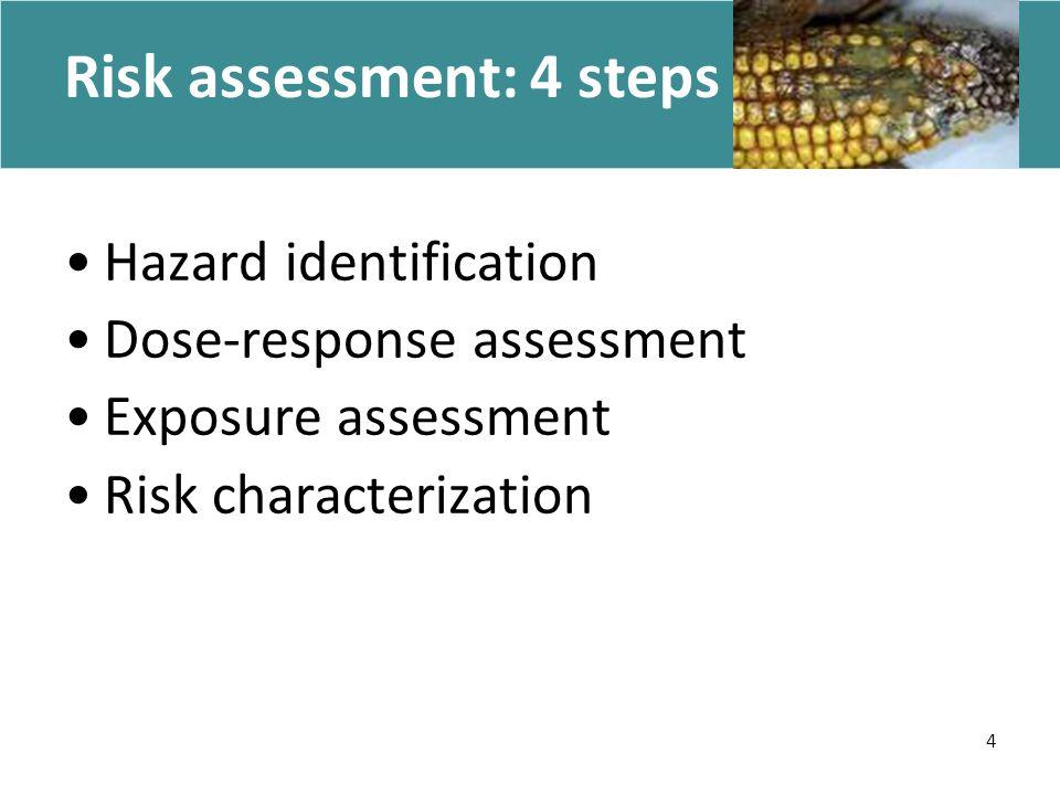 4 Risk assessment: 4 steps Hazard identification Dose-response assessment Exposure assessment Risk characterization